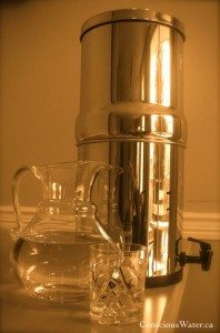 berkey filter review