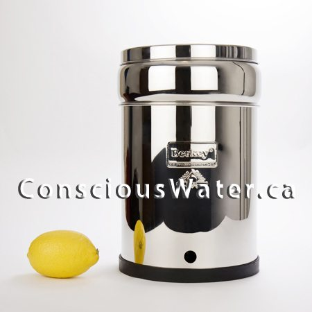 big berkey water purifier and options conscious water berkey water filter canada. Black Bedroom Furniture Sets. Home Design Ideas