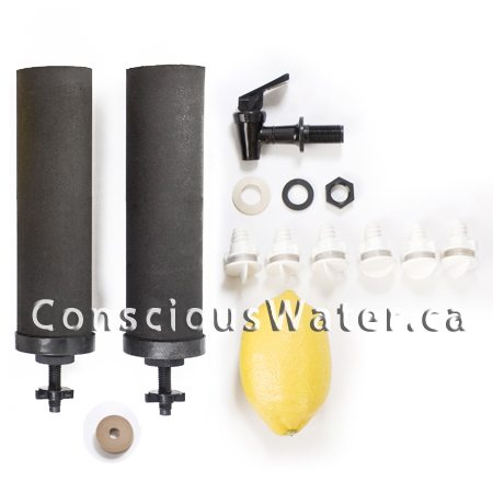 crown berkey water purifier and options conscious water berkey water filter canada. Black Bedroom Furniture Sets. Home Design Ideas